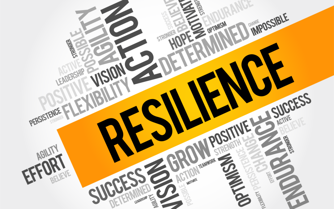 Our resilience to rising rates